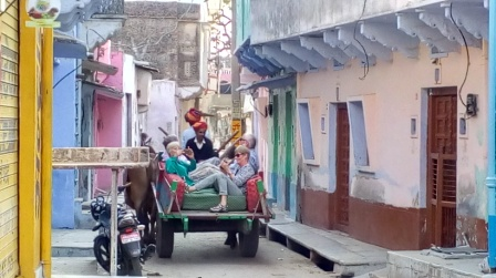 Parul tours and travels jugaad